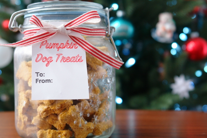 homemade dog treats in jar in front of christmas tree