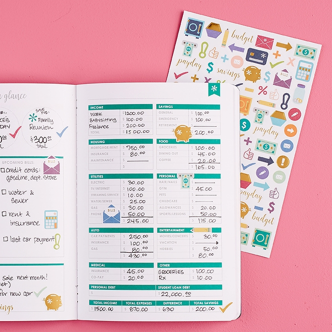 Erin Condren PetitePlanner Budget Book and stickers on a pink background