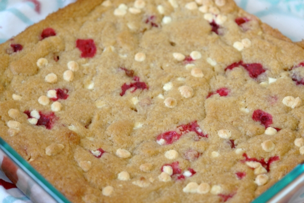 cranberry white chocolate blondies close up in pan