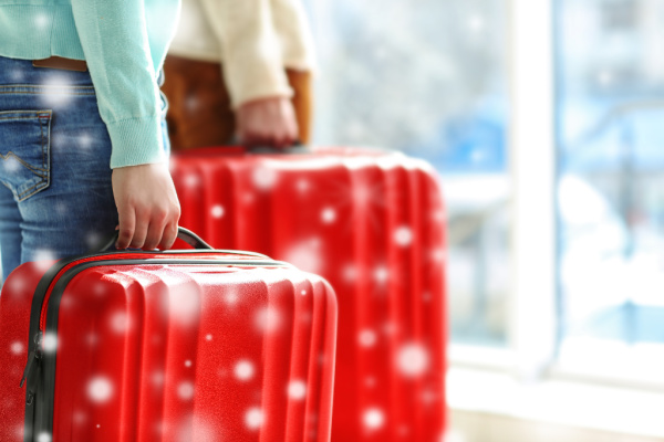 couple with luggage with wintery background